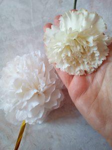 differenza tra garofano vero e garofano di carta crespa